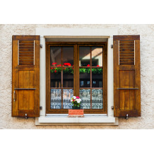 Fenêtre / porte-fenêtre PVC Alta Twin