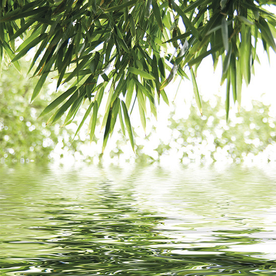 Mur décoratif Element 3D Bambou & Water