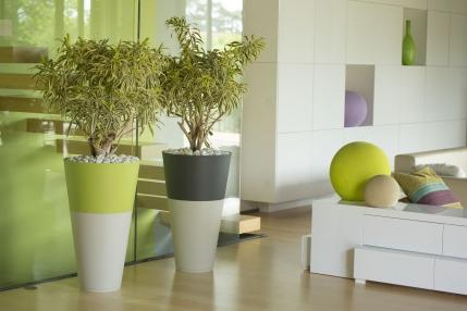 Pot de fleur, bac à plante, en duo ou en solo décoratifs. Utilisation intérieur ou extérieur